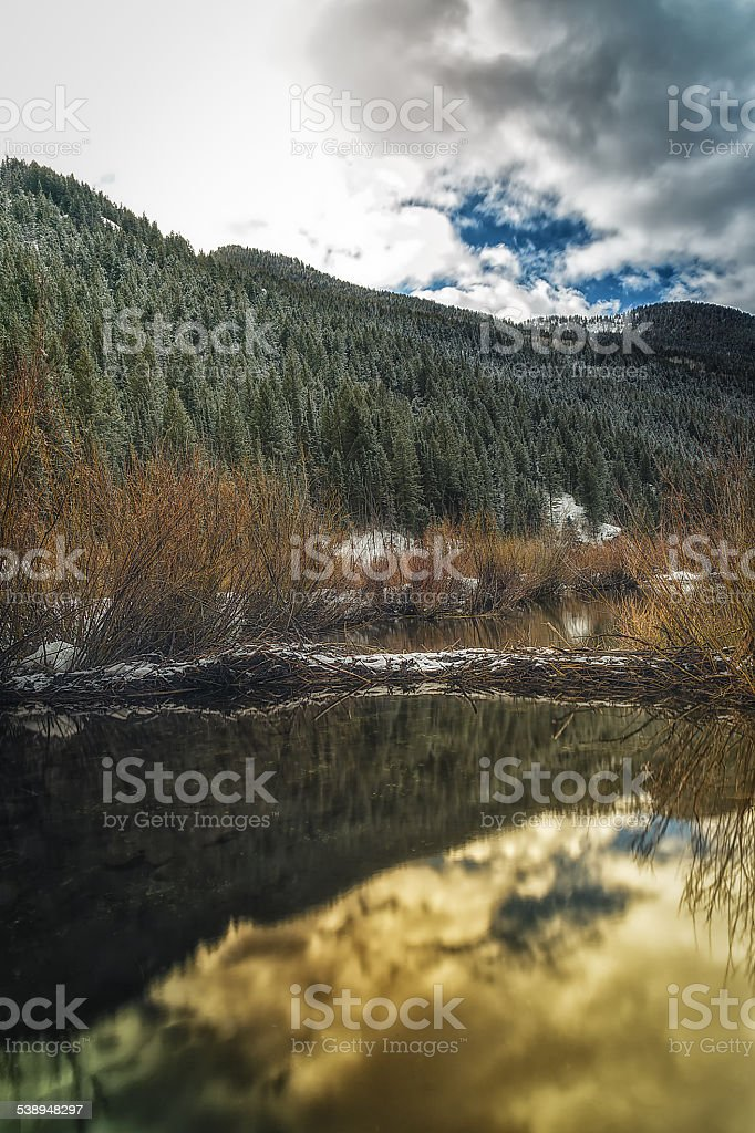 Golden Glow on the Beaver Dam stock photo