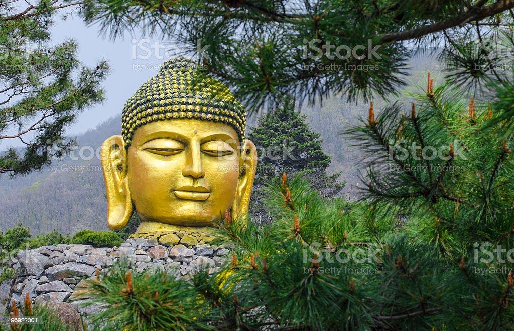 Golden Graet Buddha, Korea royalty-free stock photo