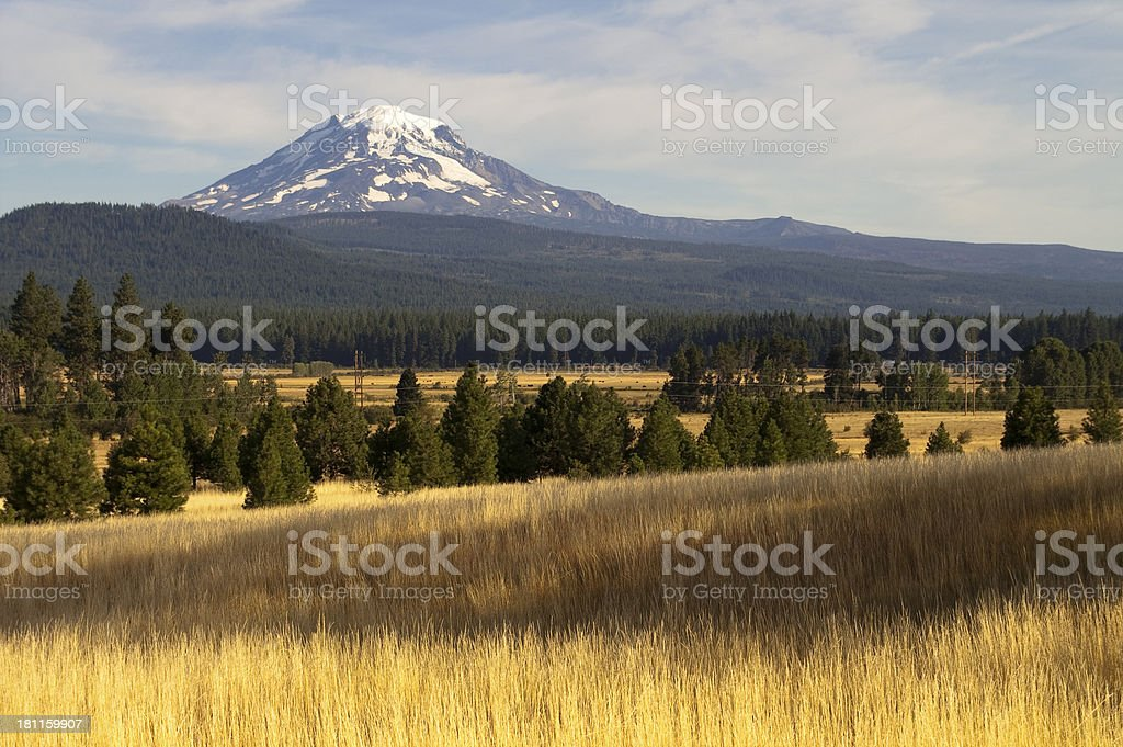 Golden Grassland Countryside Mount Adams Mountain Farmland Lands stock photo