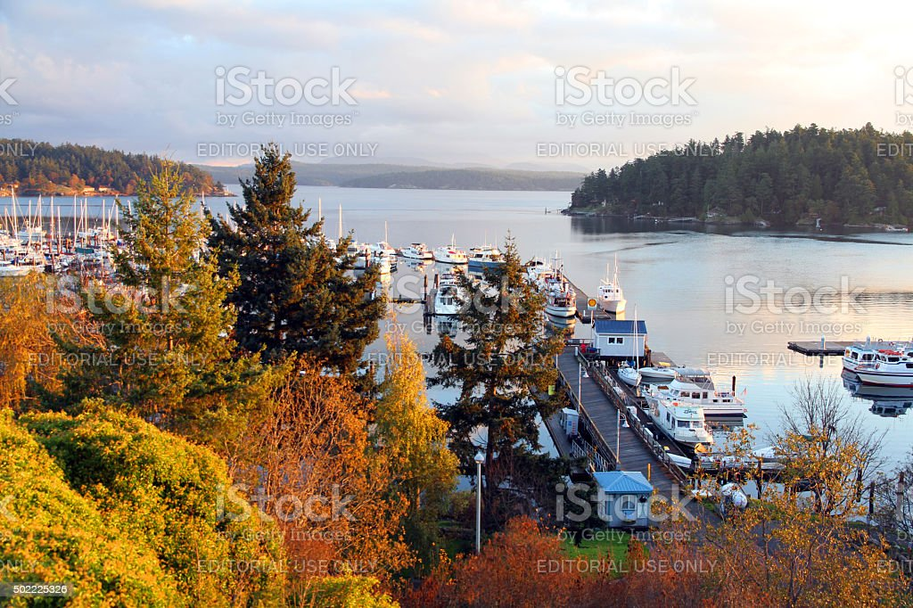 Golden Harbor stock photo