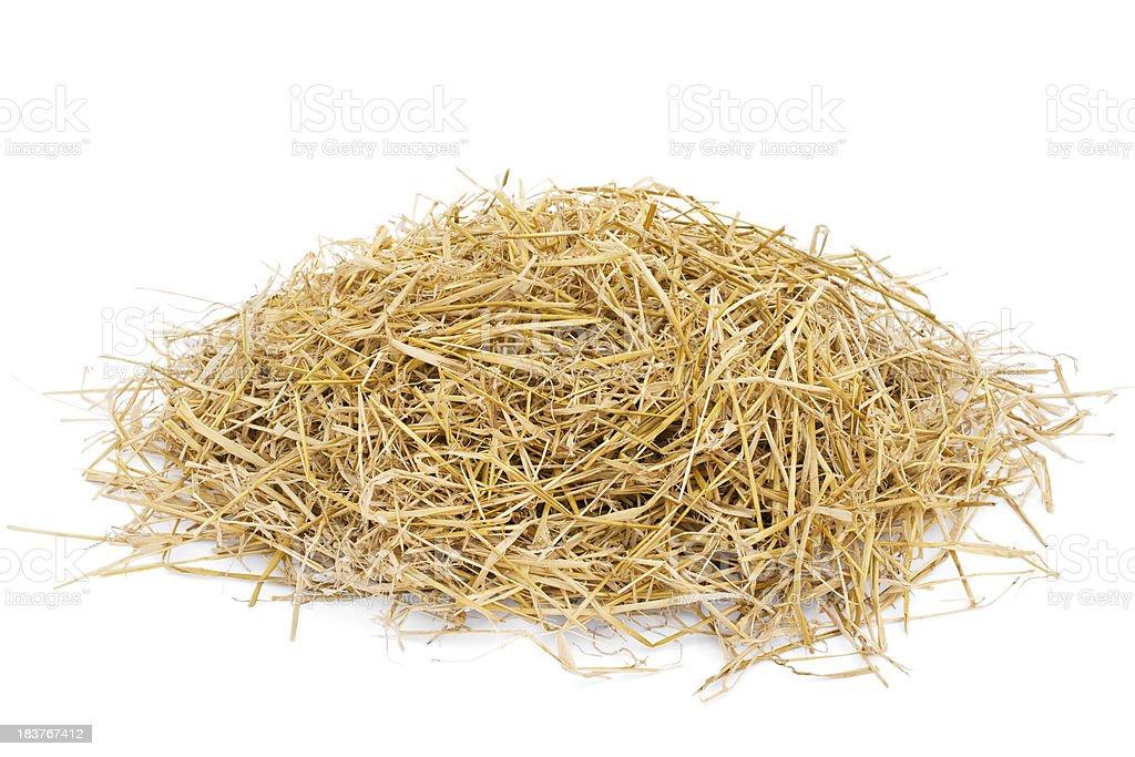 Golden hay stock photo