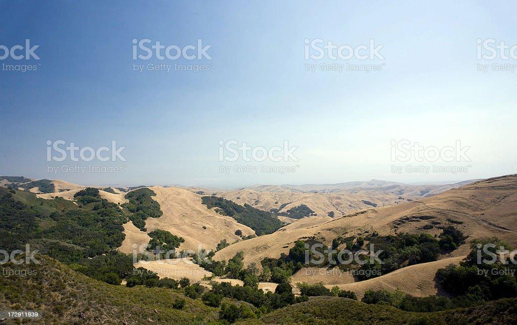 Golden hills of Paso Robles, California stock photo