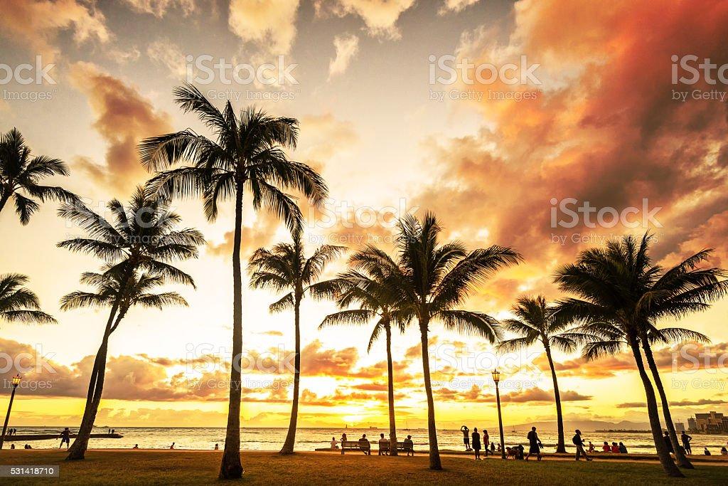 Golden hour sunset along Waikiki Beach stock photo