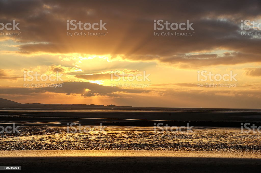Golden light at sunset royalty-free stock photo