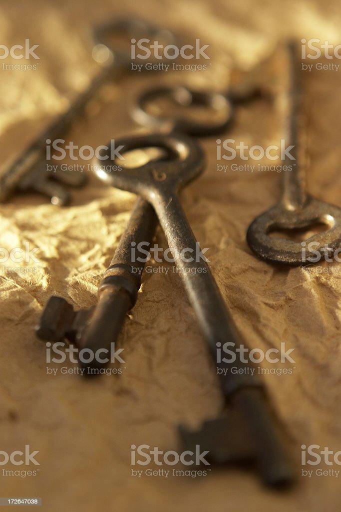 Golden Light Keys III royalty-free stock photo