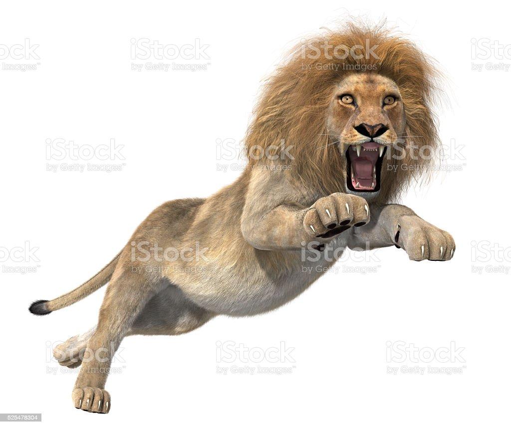 Golden Lion jumping stock photo