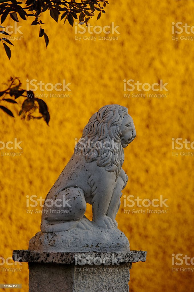 Golden Lion royalty-free stock photo