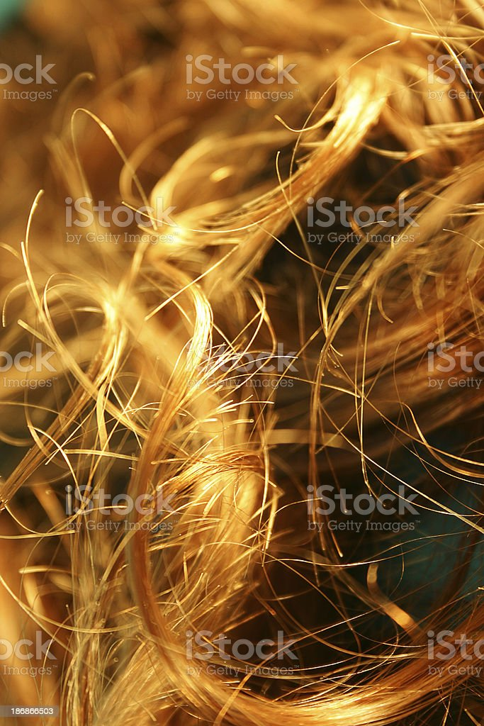 Golden Locks stock photo