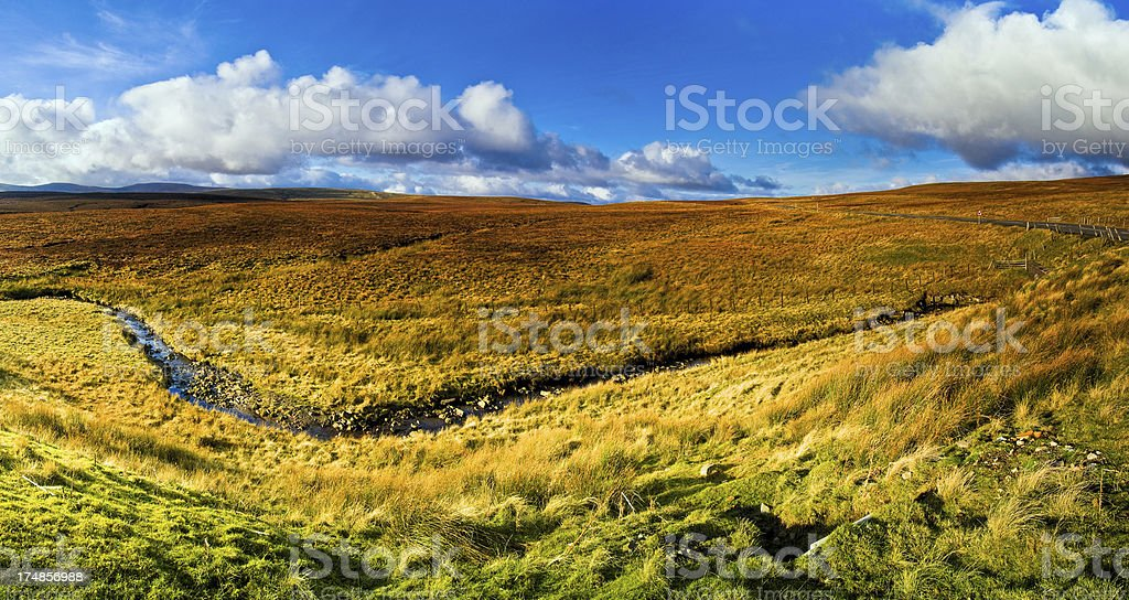 Golden moorland, North Pennines, Teesdale, Durham stock photo