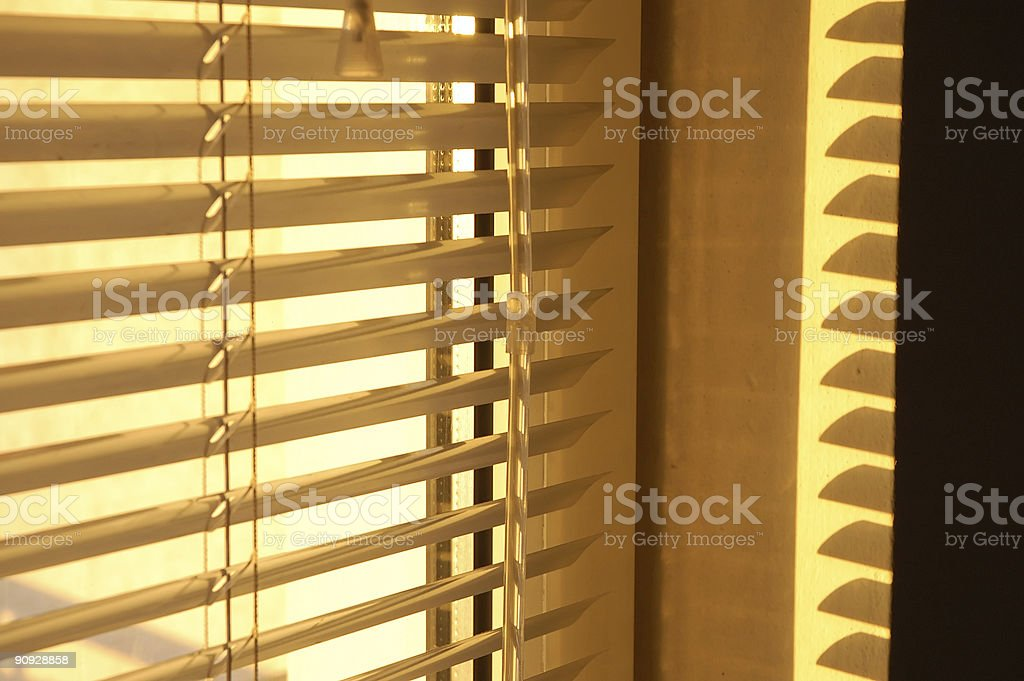 Golden morning royalty-free stock photo
