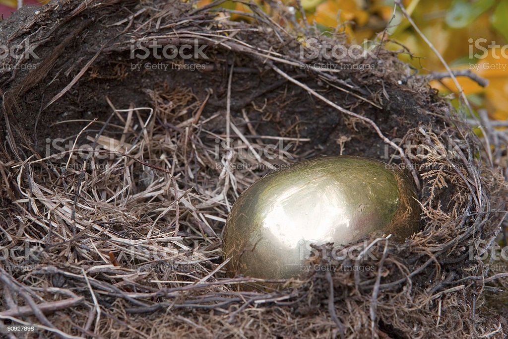 Golden Nest Egg royalty-free stock photo