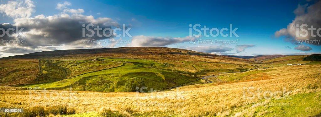 Golden open moorland of North Pennines, Teesdale, Durham stock photo