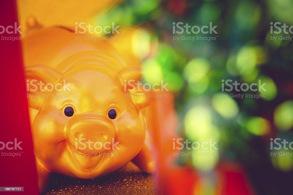 golden piggy bank behind a christmas box stock photo