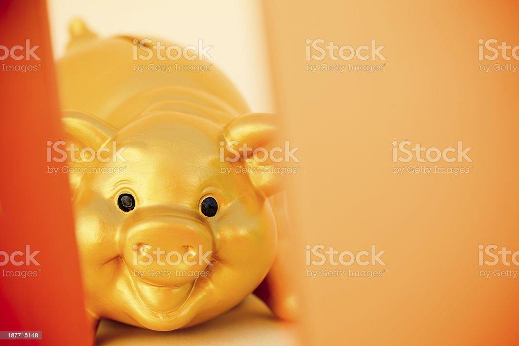 golden piggy bank behind a defocused open box stock photo