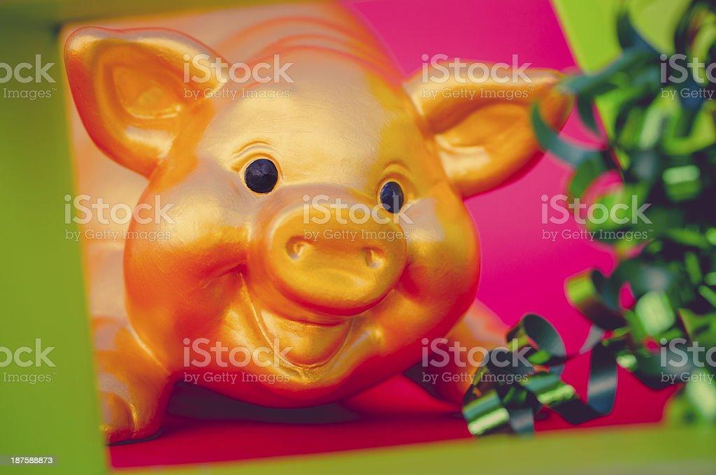 golden piggy bank behind a gift box stock photo