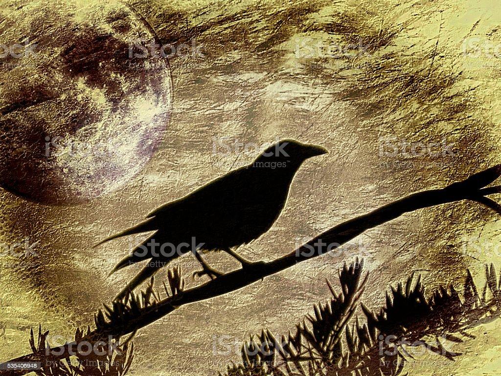 Golden Raven stock photo