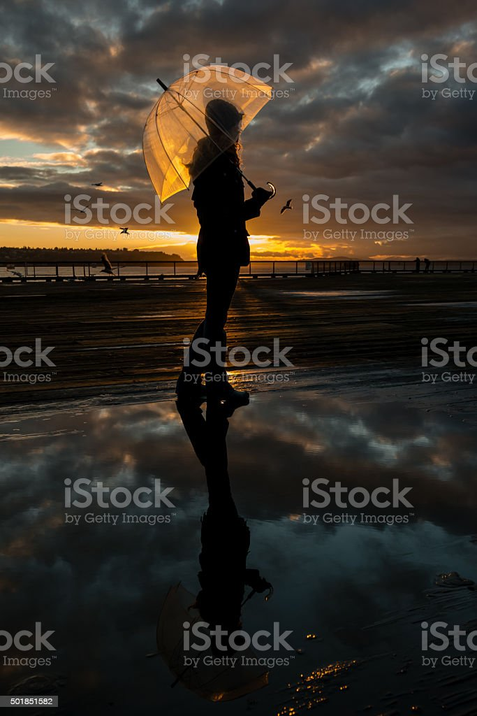 Golden Reflections stock photo