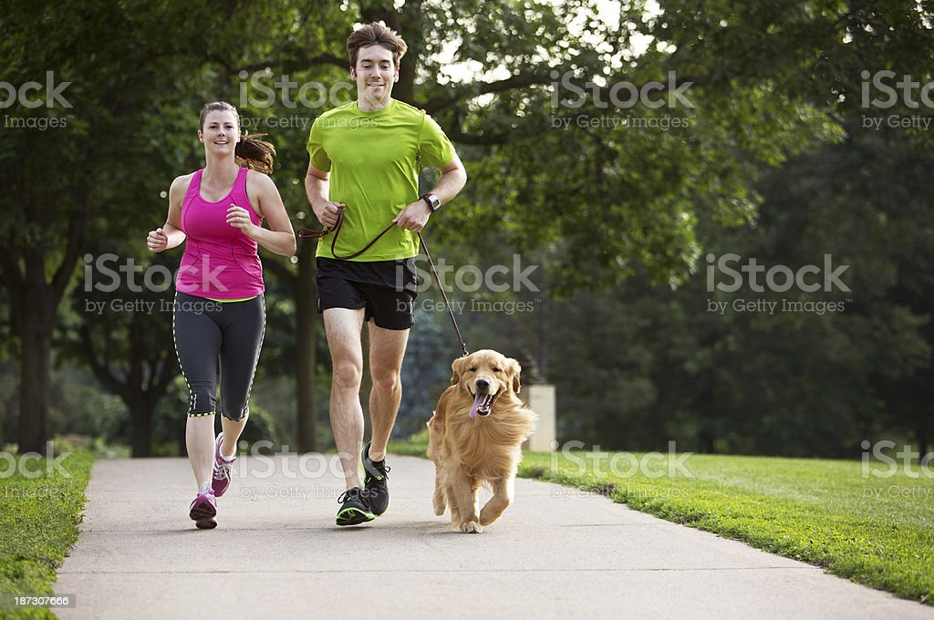 Golden Retriever , Man and Woman Jogging on a Paved Path. royalty-free stock photo
