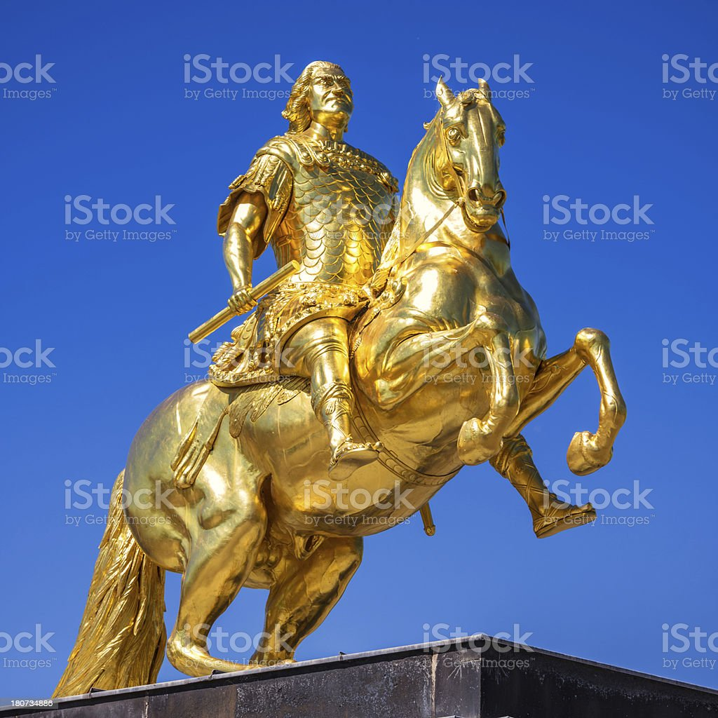 Golden Rider stock photo