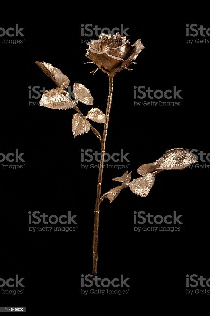 Golden rose royalty-free stock photo