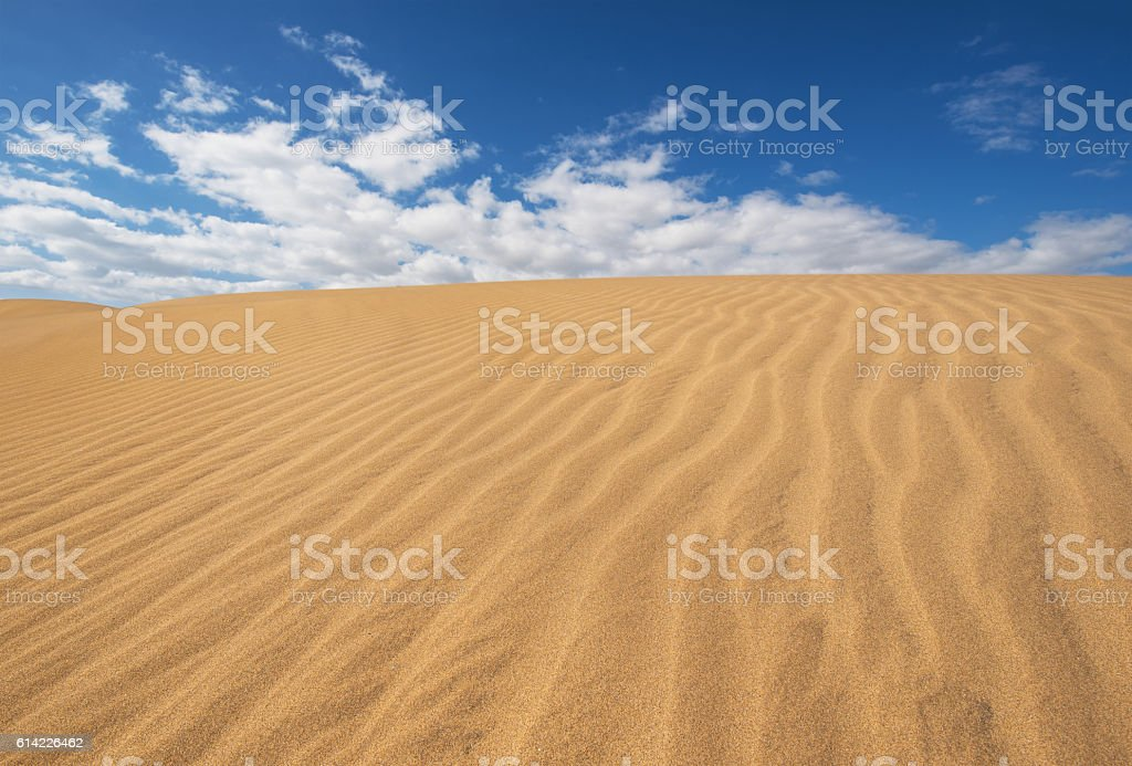 Golden sand dunes in Maspalomas, Gran Canaria, Canary islands, Spain. stock photo
