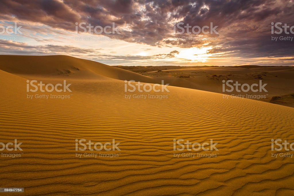 Golden sands and dunes of the desert. Mongolia. stock photo