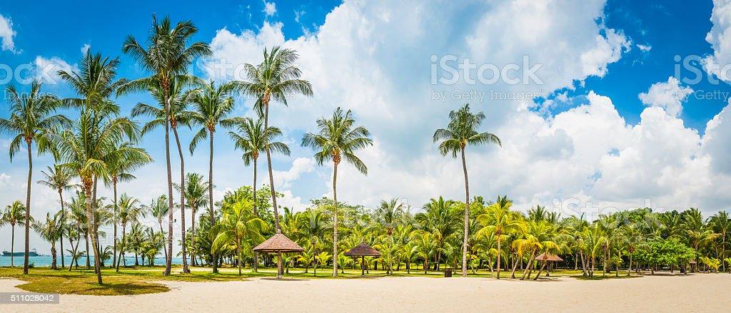 Golden sands palm trees tropical island beach resort Sentosa Singapore stock photo