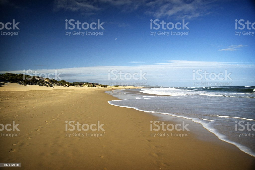 Golden Sandy Beach royalty-free stock photo