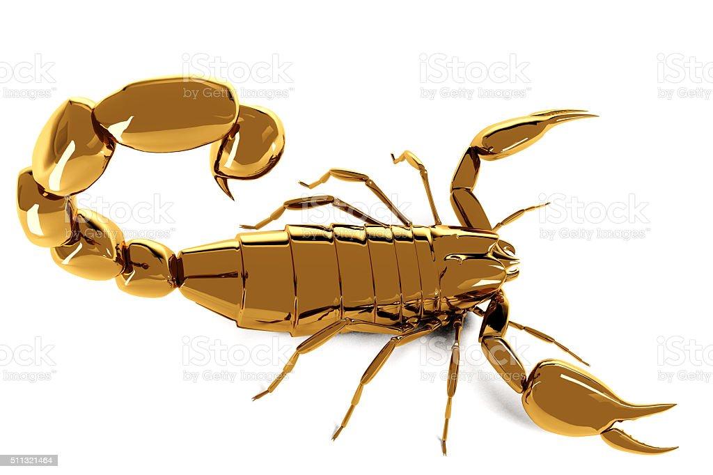Golden scorpio on white background stock photo
