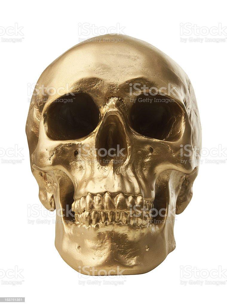 Golden skull on white background stock photo