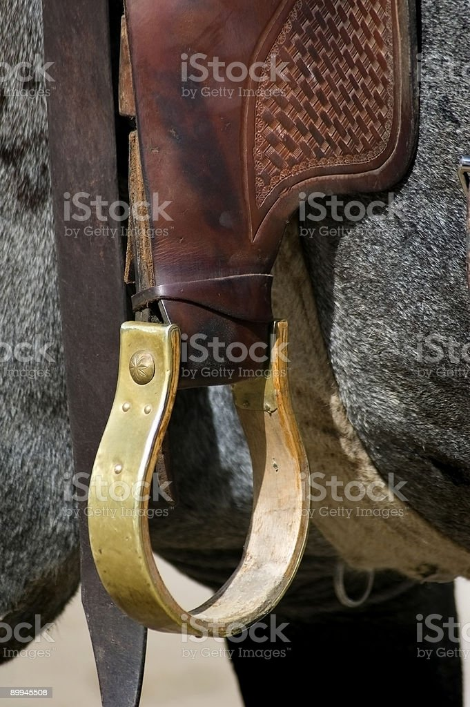 Golden Stirrup stock photo