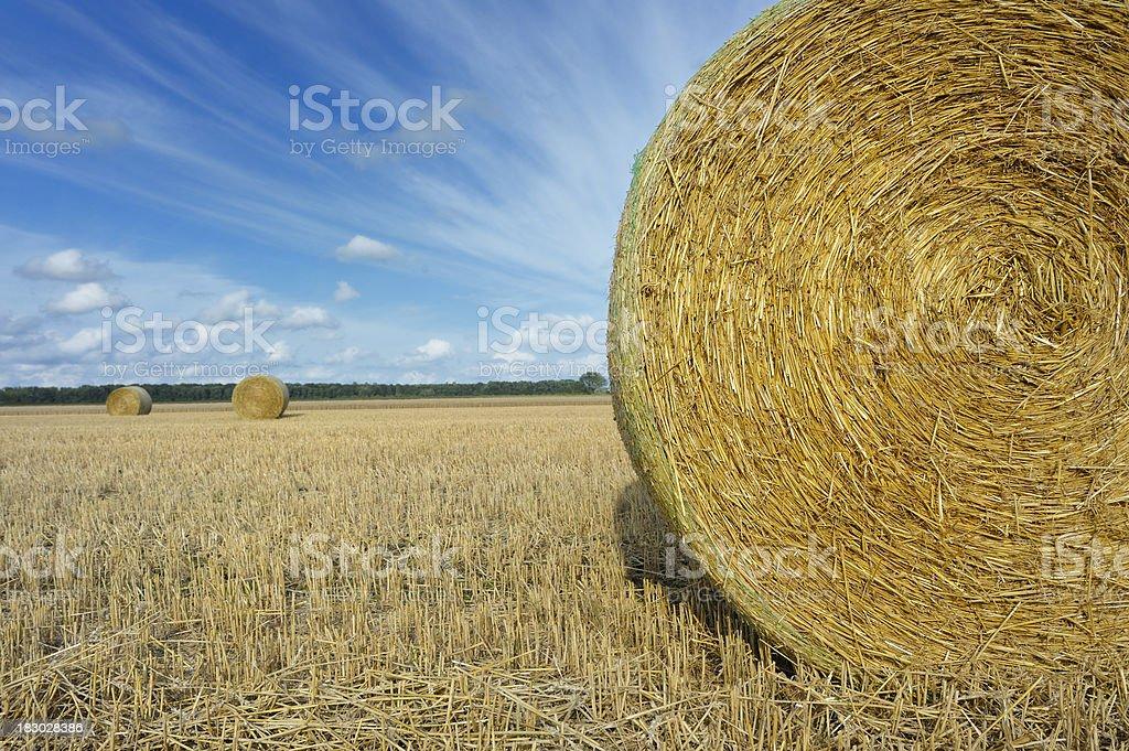 Golden Straw Bales royalty-free stock photo