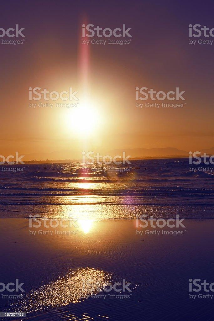 Golden Summer royalty-free stock photo