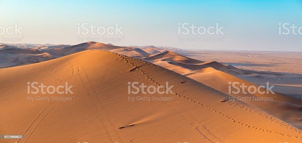 Golden sunlight on sand dunes, Namibia, Africa stock photo