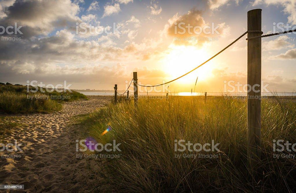 Golden sunrise illuminating sand dunes trail to summer ocean beach stock photo
