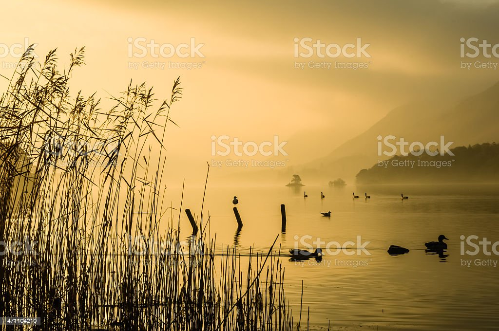 Golden Sunrise Over Derwentwater Keswick Lake District Cumbria stock photo