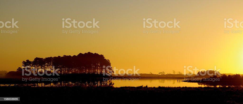 Golden Sunrise over Wetlands stock photo