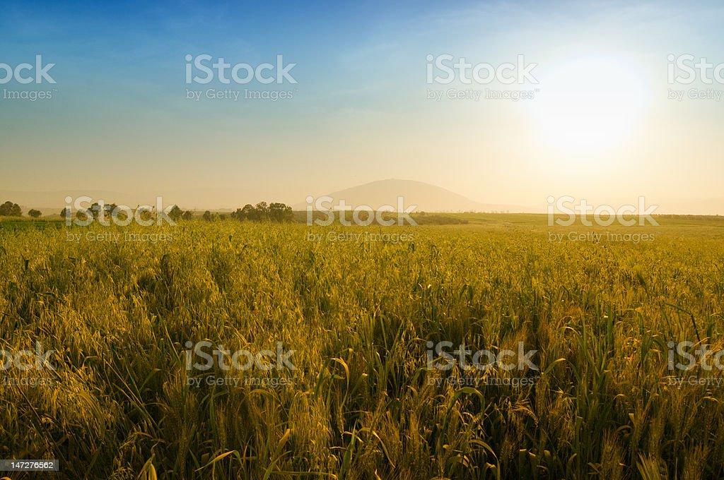 Golden sunset on the mount Tabor stock photo