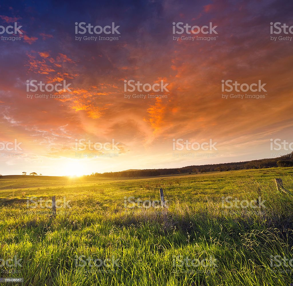 Golden Sunset stock photo