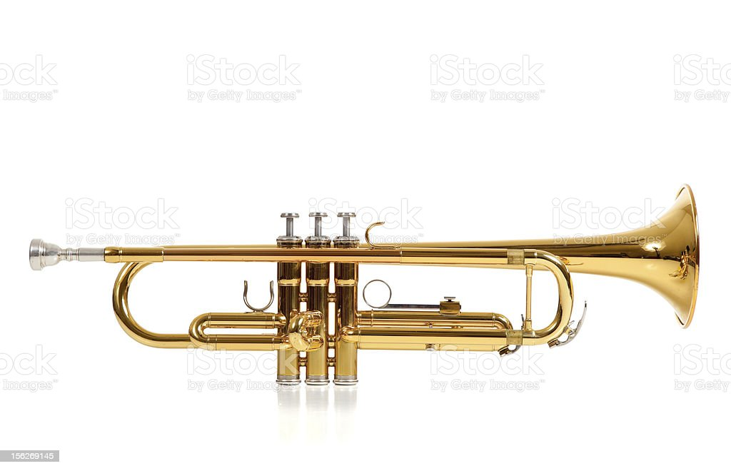 Golden trumpet in front of a white background stock photo
