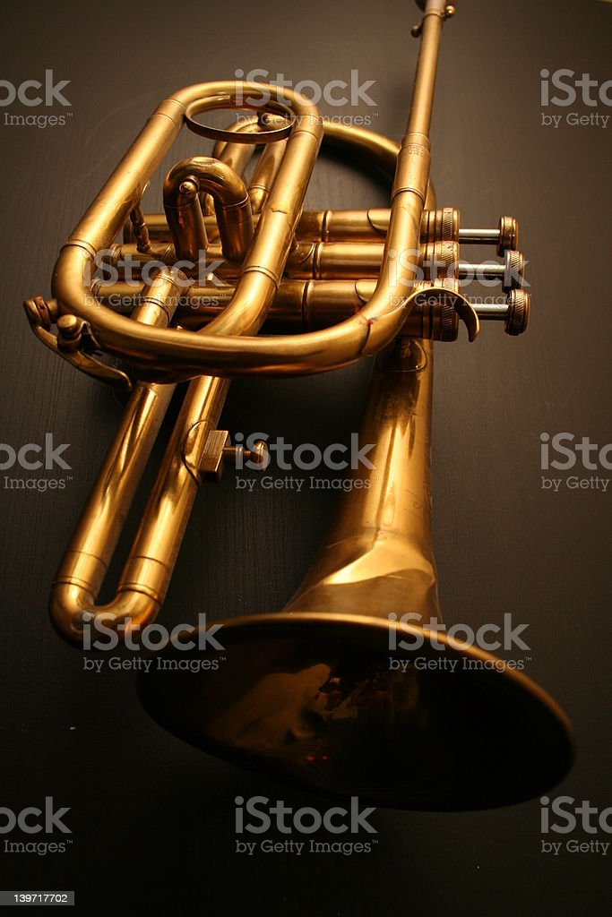 Golden trumpet royalty-free stock photo