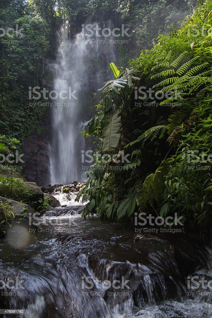 Golden Valley Falls, Munduk, Bali stock photo