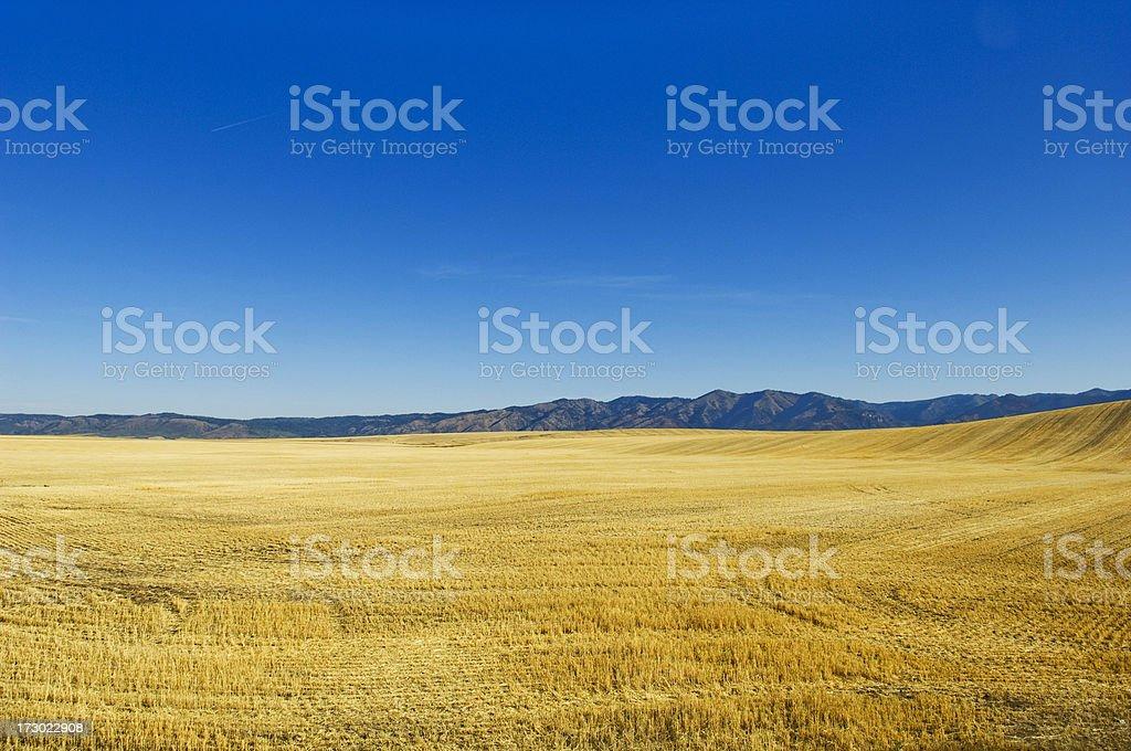 Golden Valley in Idaho stock photo