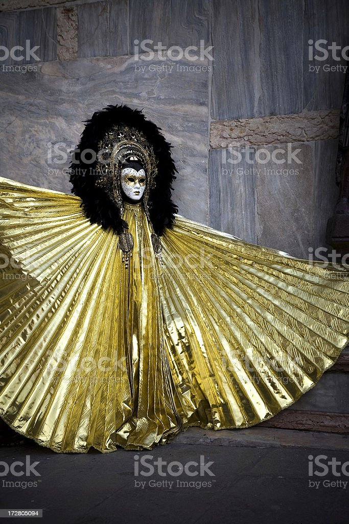 Golden; Venice Carnival 08 royalty-free stock photo