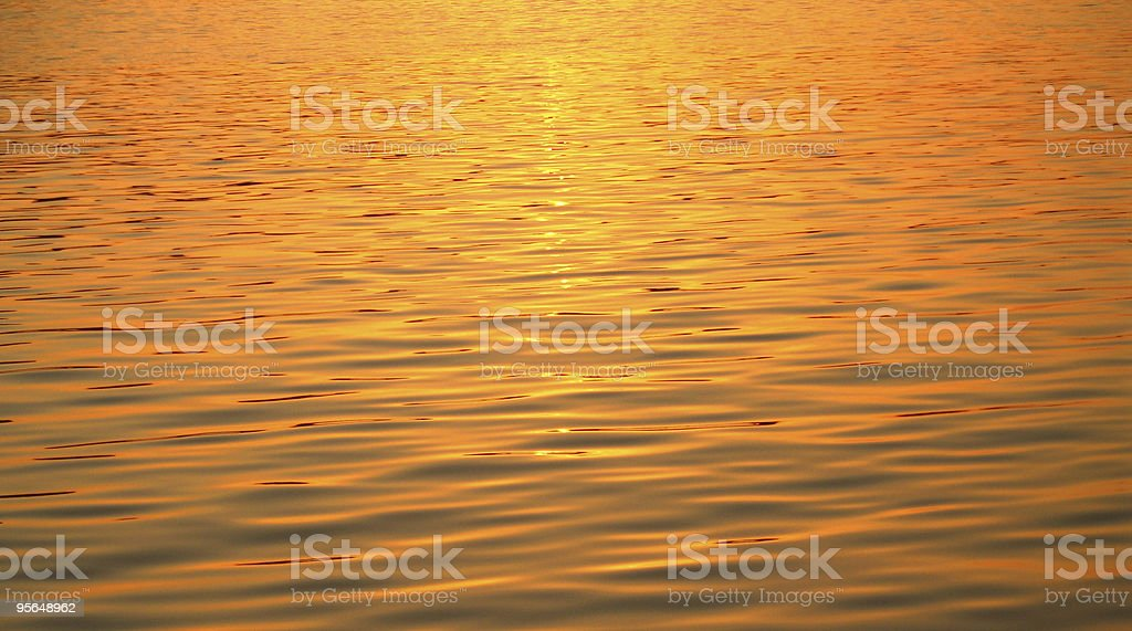 golden waters royalty-free stock photo