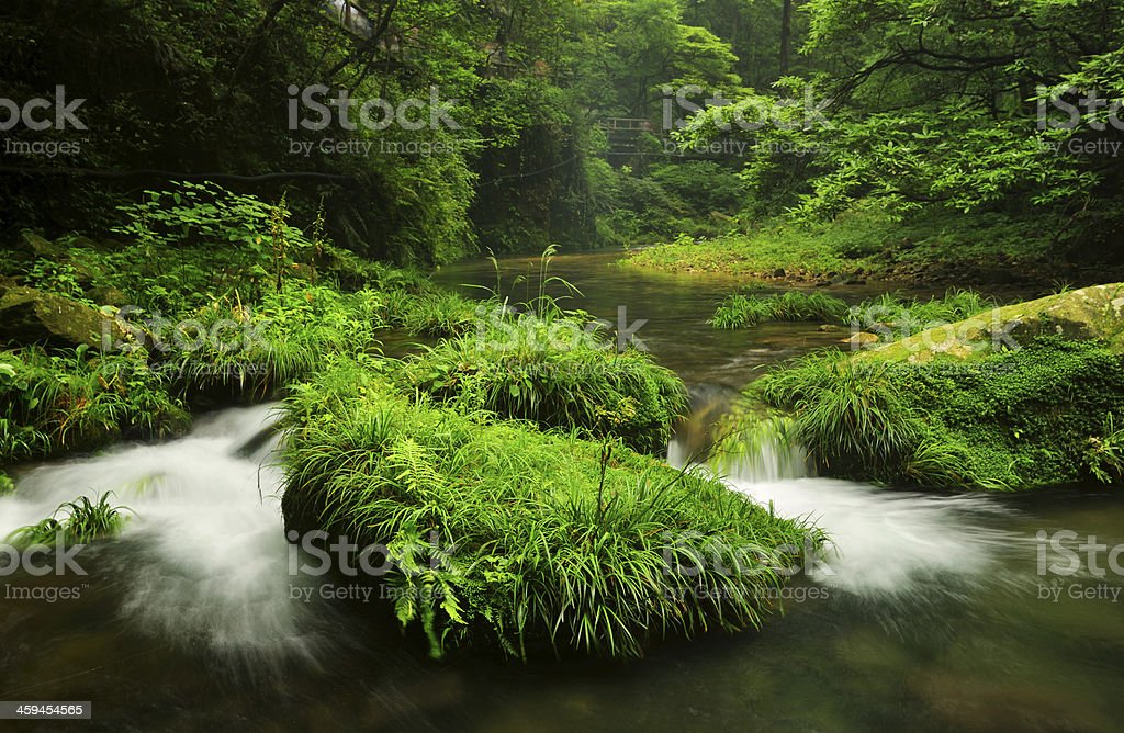 Golden Whip Stream in China stock photo