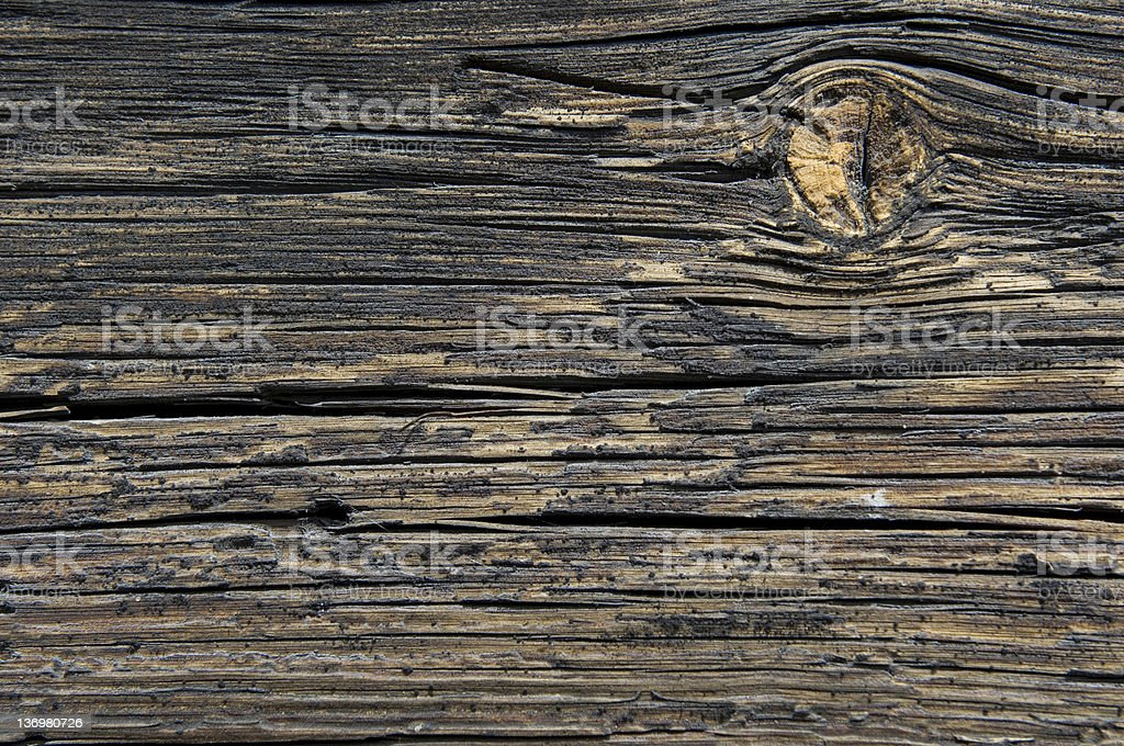 Golden wood royalty-free stock photo
