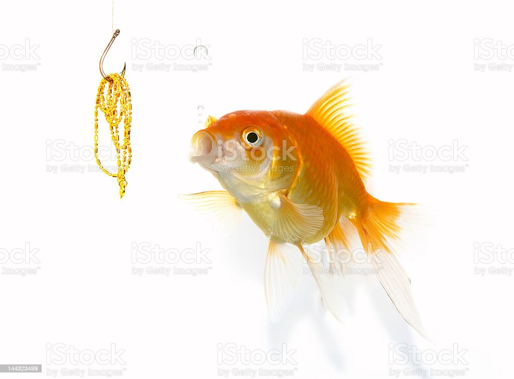 goldfish and jewel royalty-free stock photo