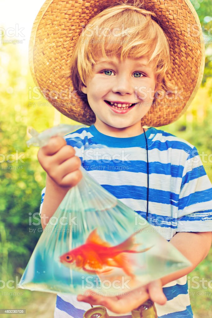 Goldfish fishing royalty-free stock photo