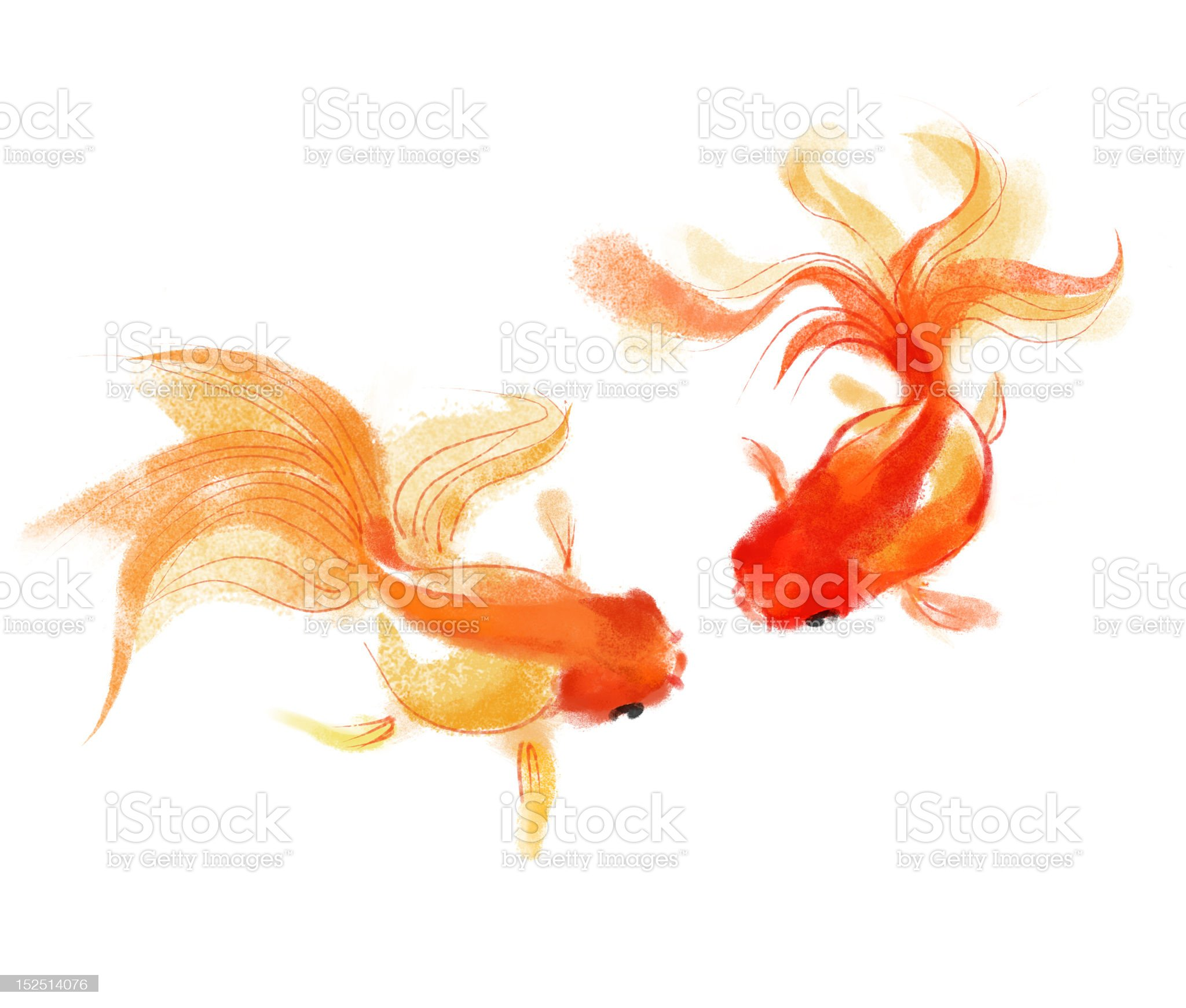 Goldfish royalty-free stock vector art
